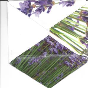 lavender envelope